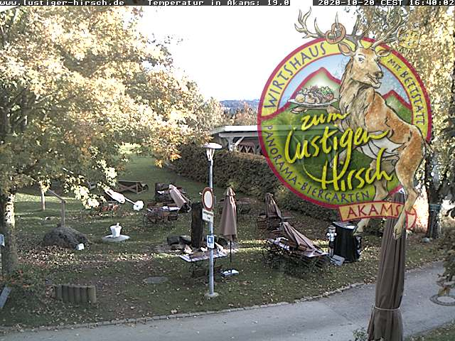 Webcam Lustiger Hirsch